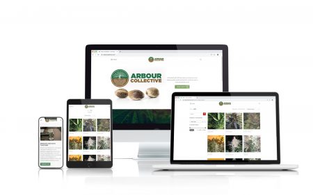 portfolio Arbour Collective