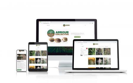 portfolio Arbour Collective
